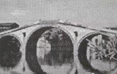 江宁街道文物解读第二期‖陆郎神山头:人间世事、此谢彼起!