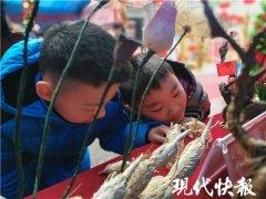 逛庙会、品小吃、迎新春,淮安两场庙会22日启动
