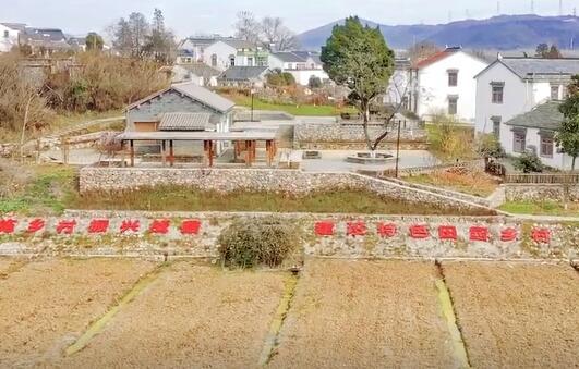 美丽江苏乡村行——走进东山街道佘村社区(1)