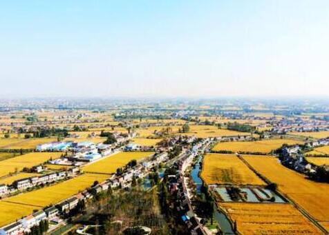 淮安市11个村庄获评省特色田园乡村